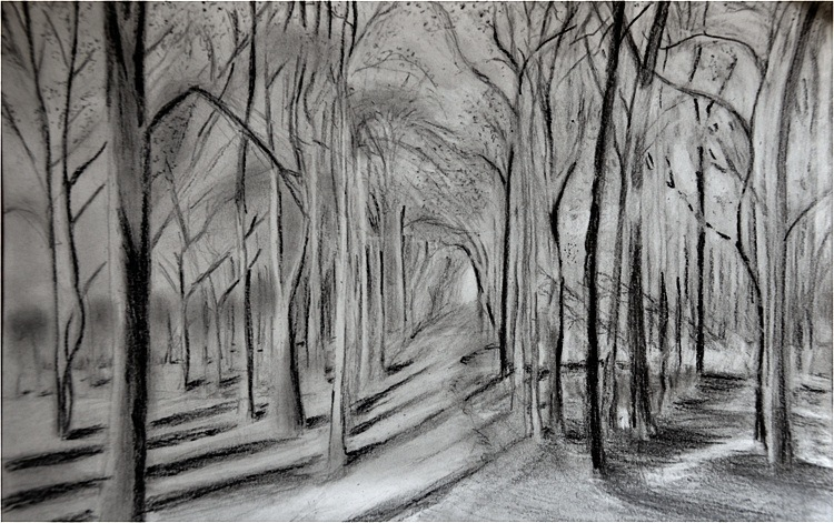 A forest. Charcoal &digital, 21x30, 2012. (Source: David Hockney)