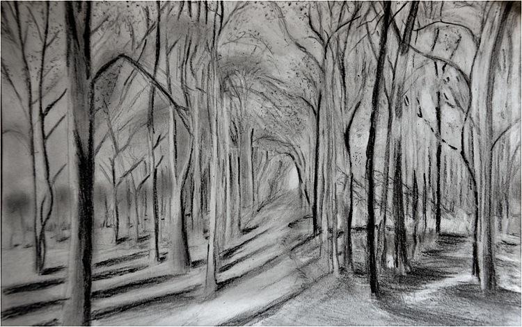 A forest. Charcoal &digital, 21x30, 2012. (Source: David Hockney)