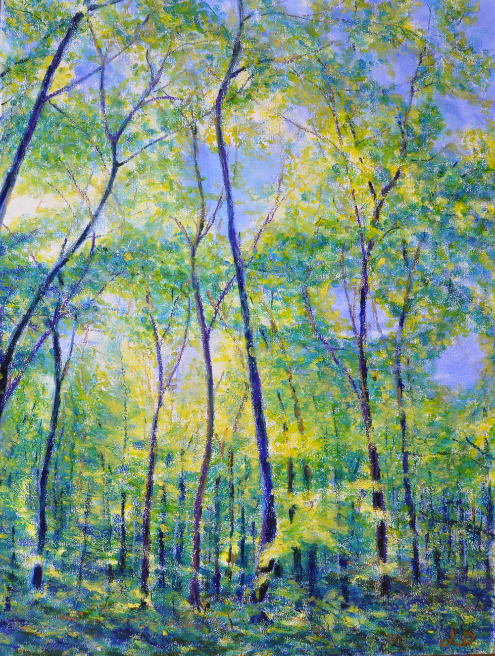 Cossonay forest no. 8. Oil pastel on paper, 75x60, 2016