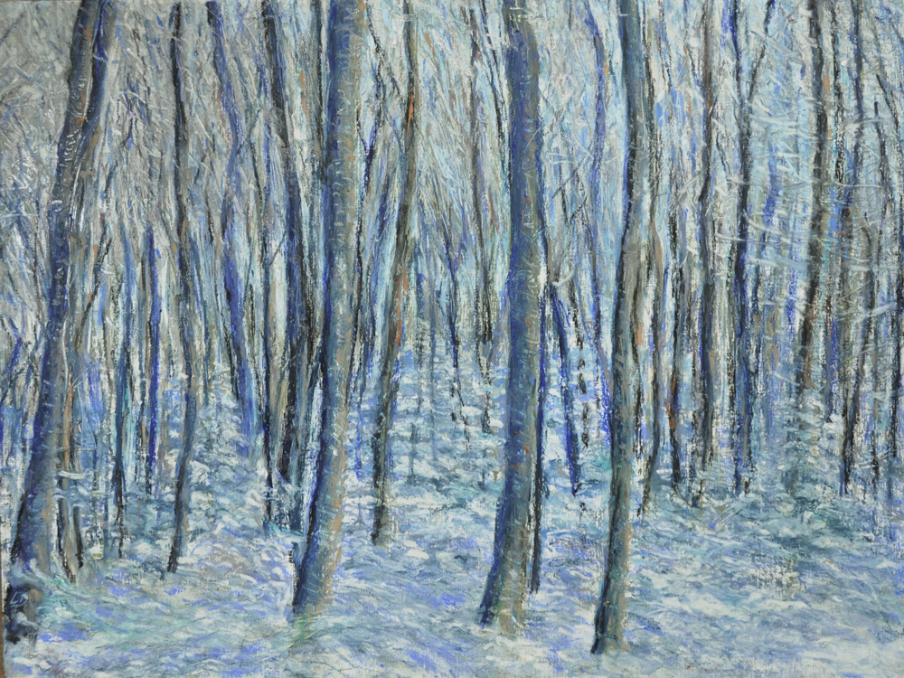 Cossonay forest no. 1. Oil pastel on paper, 42x56, 2016