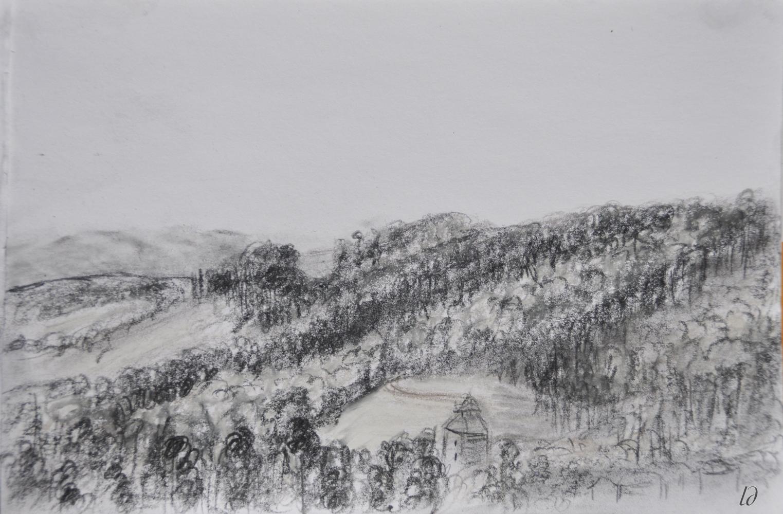 Hill, Penthalaz. Crayon on paper, 16x24, 2017
