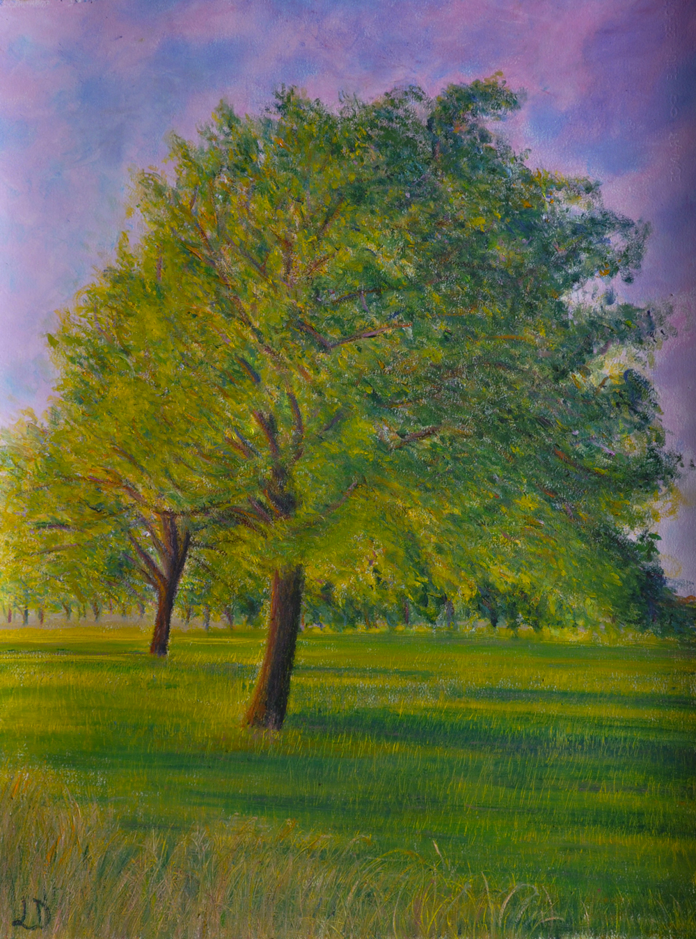 Walnut trees no. 8, Penthalaz. Oil on paper, 76x56, 2017