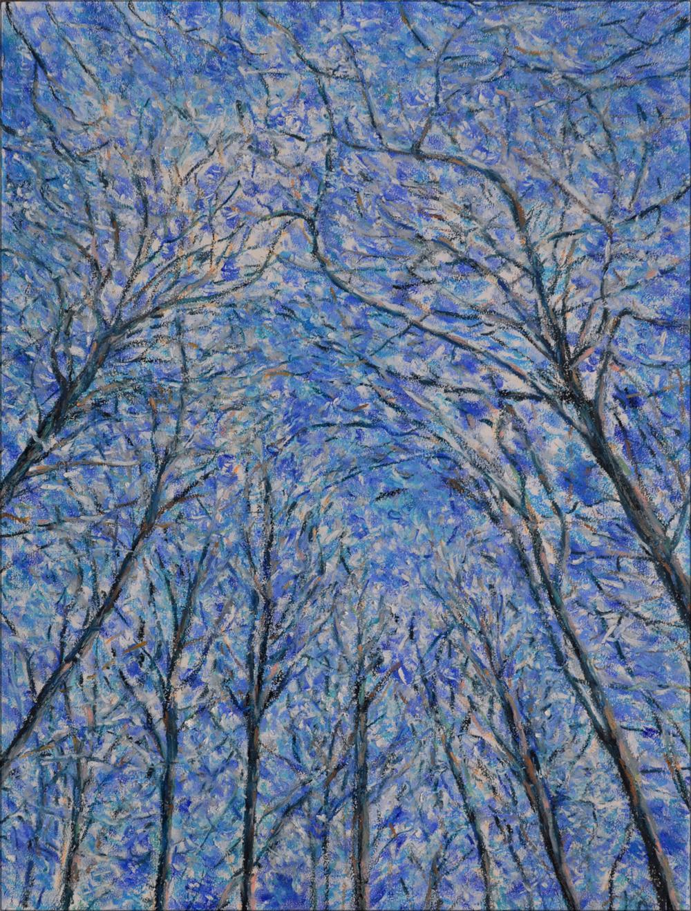 Forêt, Cossonay, no. 2. Pastel à l'huile sur papier, 75x60, 2016