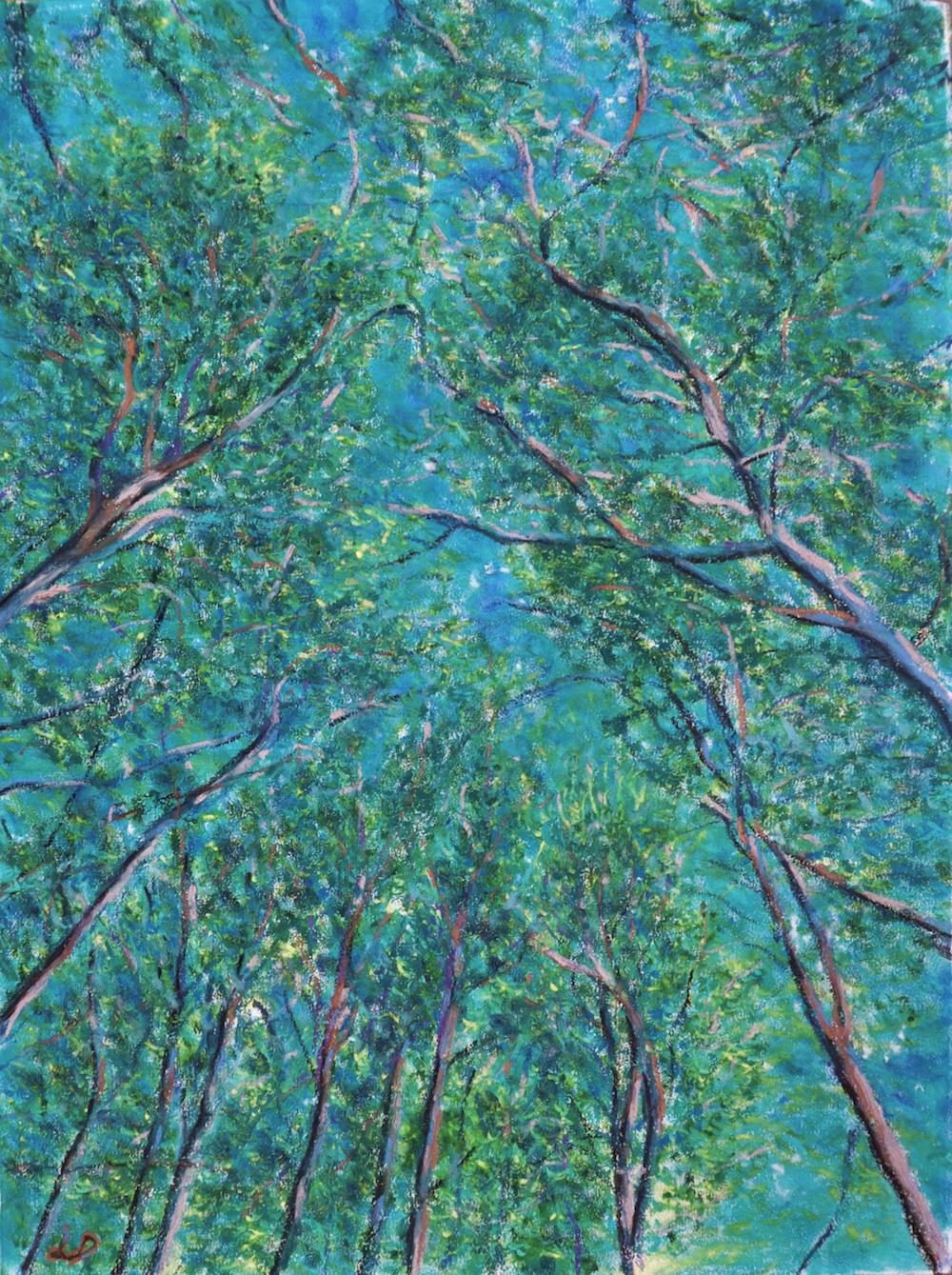 Forêt, Cossonay, no. 3. Pastel à l'huile sur papier, 75x60, 2016