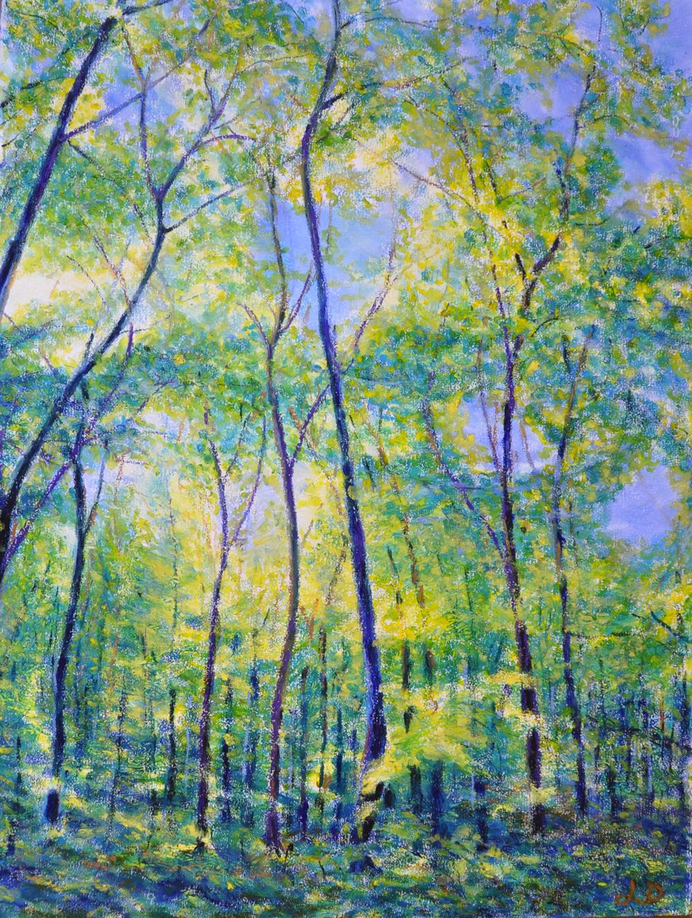 Le bois du Sépey no 8. Pastel à l'huile sur papier, 75x60, 2016