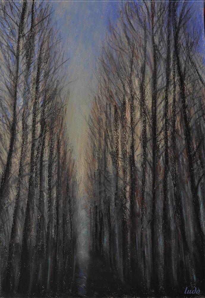 Forêt, Lahonce, no. 1. Pastel à l'huile et fusain sur papier, 42x30, 2015