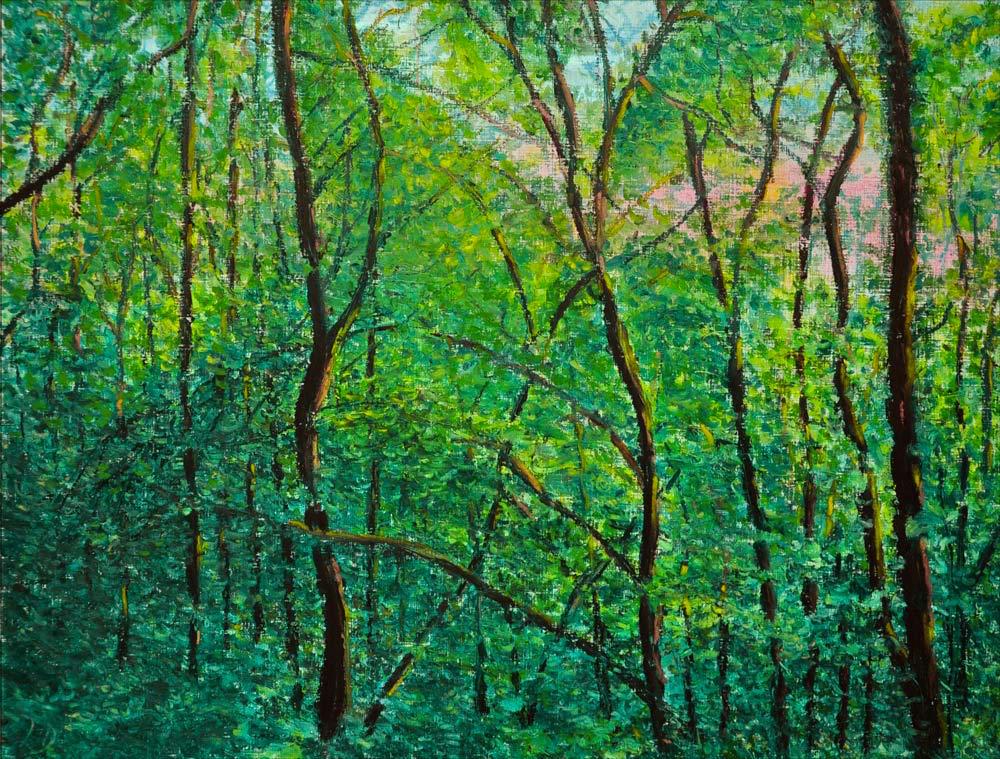 Forêt, Lahonce, no. 8. Pastel à l'huile sur papier, 65x50, 2015