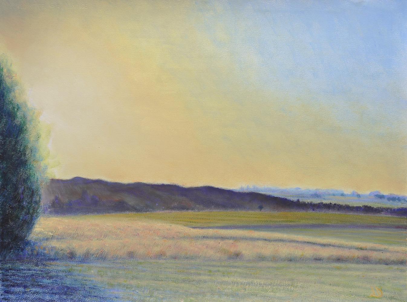 Champs, vue sur le Jura, Penthalaz. Huile sur papier, 56x76, 2017