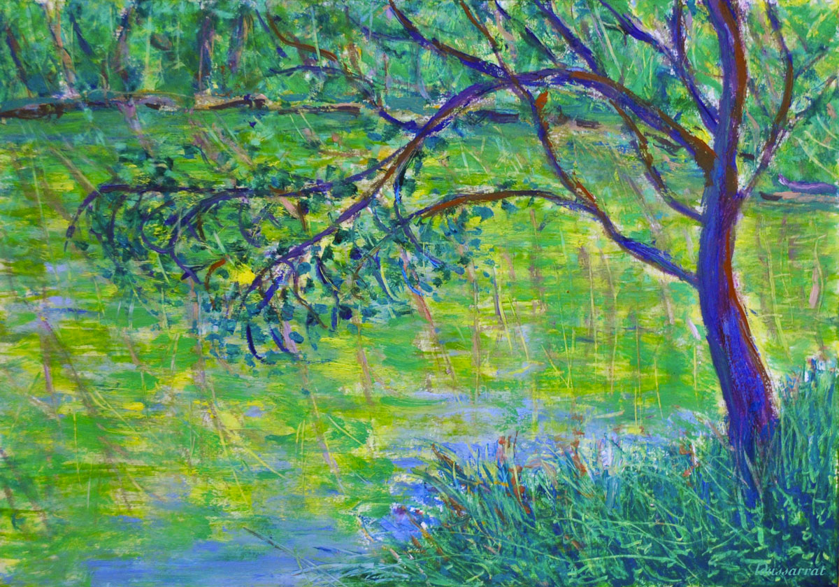 Arbre au bord de l'étang, Salernes. Mixed media sur papier. 21x30, 2019