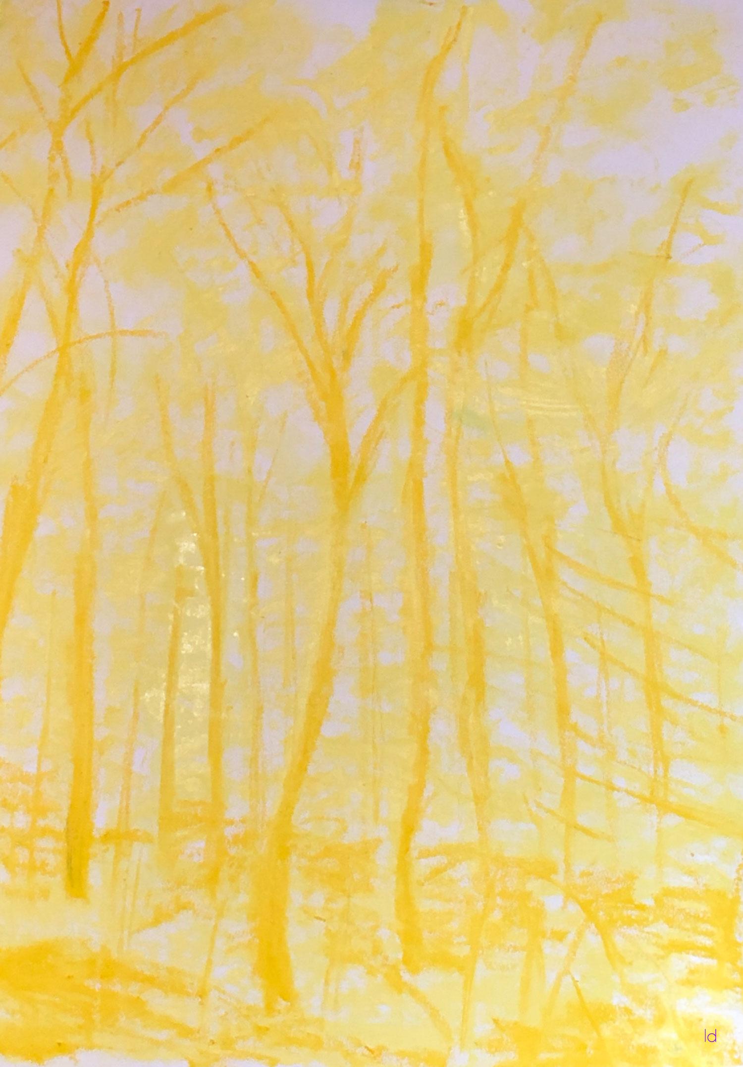 Bois du Sepey, 13, esquisse. Huile sur papier. 56x76, 2020