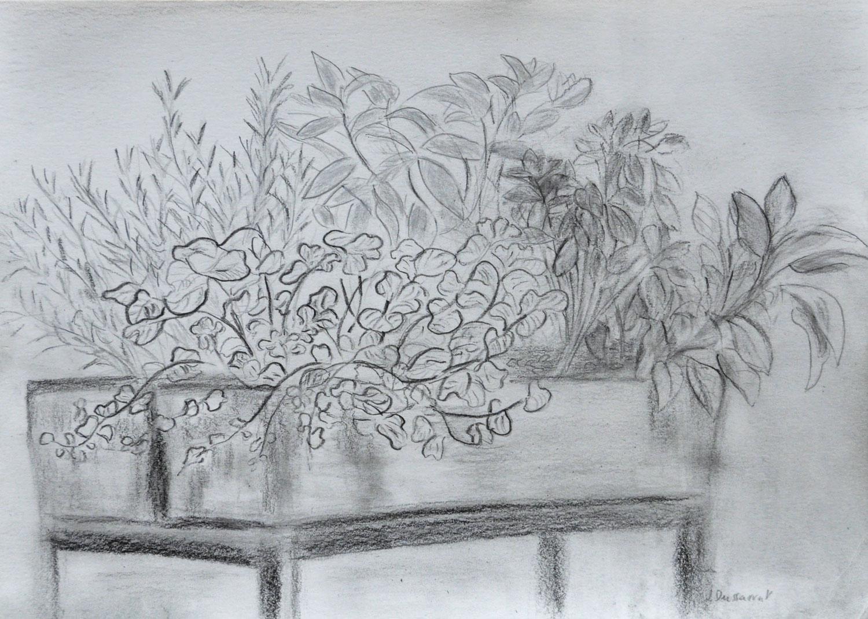 La jardinière. Dessin sur papier, 21x30, 2021